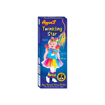 4 Feet Twinkling Star - Metro/Other
